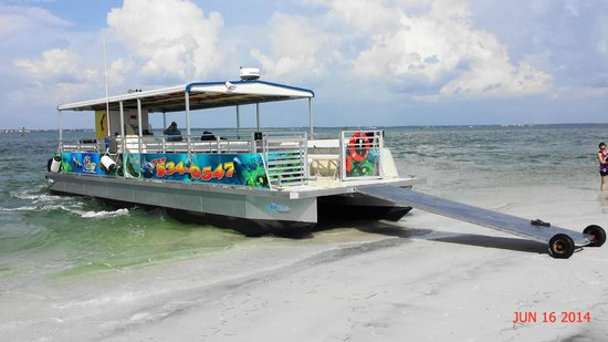 Tarpon Springs, FL: Our Boat at Anclote Island