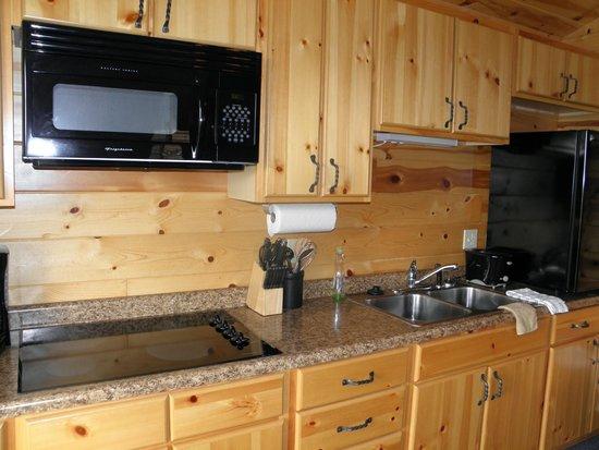 Frontier Cabins Motel: Kitchenette