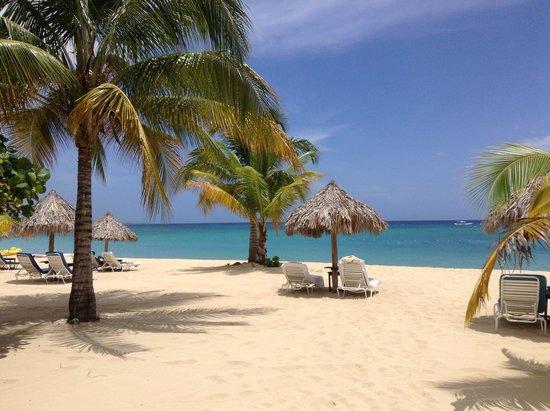 Jamaica Inn: Paradise