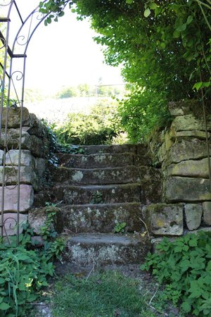La Maison des Roses: Steps in the garden