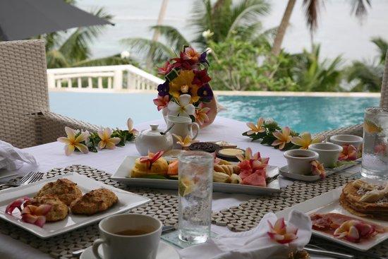 Taveuni Palms Resort : Terrace Dining
