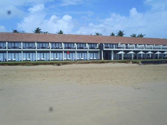 The Surf Hotel: aaaa
