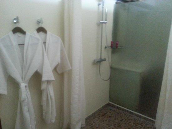 Cattleya Suite by Marbella : Shower
