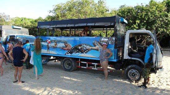 Macao Beach: ВДВ-сафари