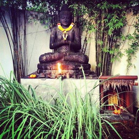 Villa Samadhi - By Samadhi : Good morning