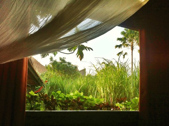 Desa Seni, A Village Resort: View from Bed!