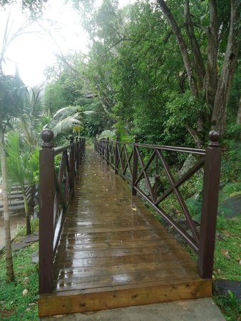 Cerf Island Resort : path to some other villa