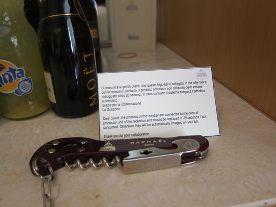 Hotel Raphael: Bottle opener chained to fridge