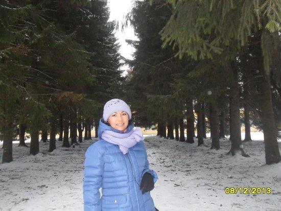 Pavlovsk Palace and Park: Парк