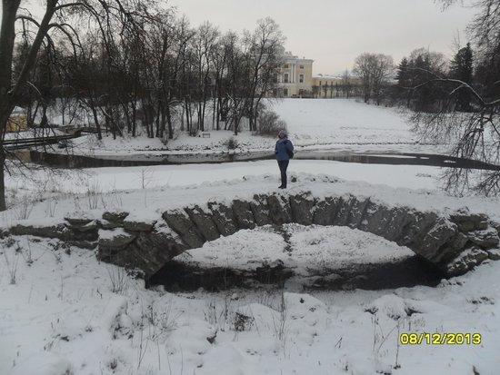 Palais et parc de Pavlovsk : мостик