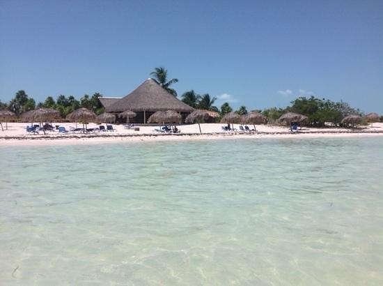 Gran Caribe Club Coral: cayo rico