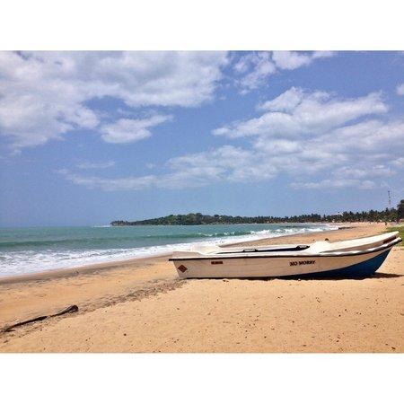 Panama Village Resort, Arugambay : A beautiful beach