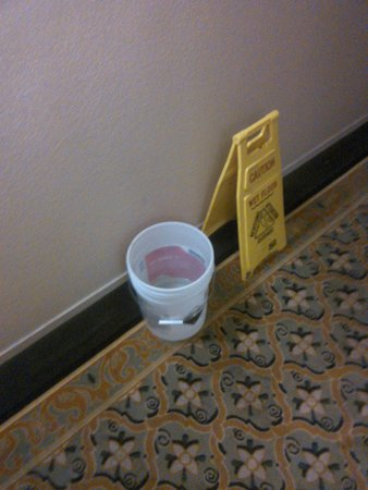 Fortune Hotel & Suites: Bucket catching water dripping from the ceiling.
