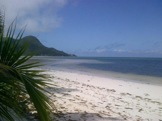 Indian Ocean Lodge: Vue de Grand Anse depuis le jardin de l'hôtel