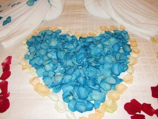 Rendezvous Hotel Singapore by Far East Hospitality: Heart Shape blue rose pedals