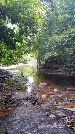 Khlong Chak Waterfall: On the way to the waterfall