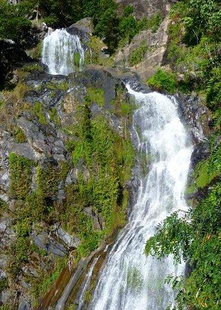 Kuranda Scenic Railway : Waterfall