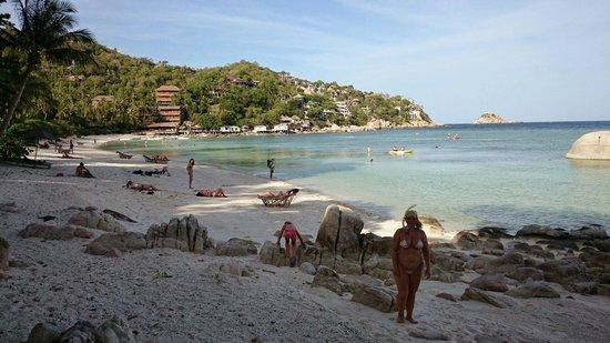 Haadtien Beach Resort: SHARK BAY