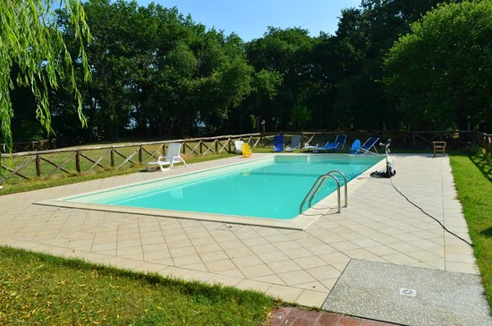 Agriturismo Le Baccane : la meravigliosa piscina