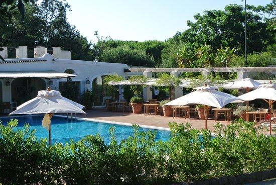 Garden & Villas Resort : het zwembad