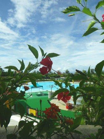 Howard Beach Resort Kenting : 泳池