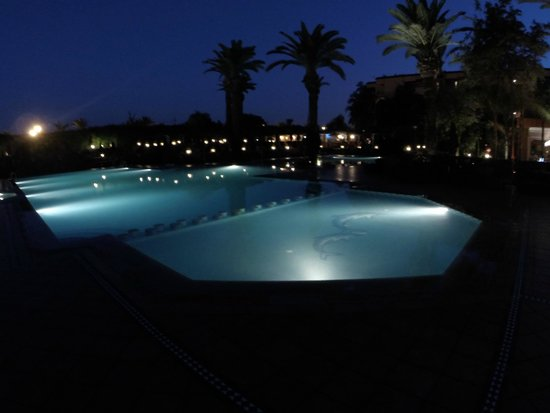 Sofitel Marrakech Lounge and Spa : Pool