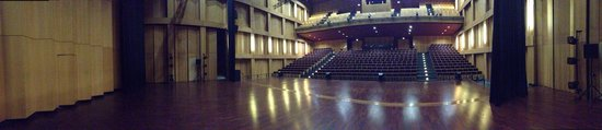Conservatoire National a Rayonnement Regional: Panorama de la salle depuis la scène.