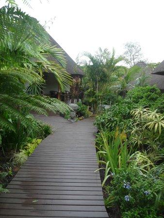 Lodge Afrique: intérieur hôtel