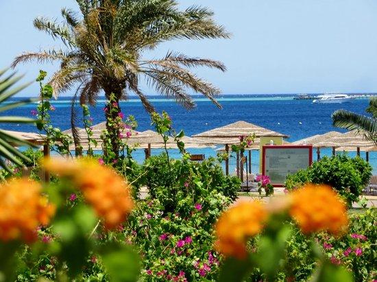 Fort Arabesque Resort, Spa & Villas: Strand