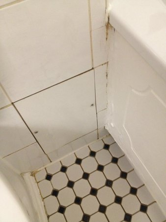 Crowne Plaza London - Kings Cross: More mould and a rotten bath panel
