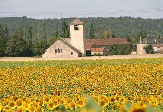 Domaine de l'Erable : Eglise Chassignelles du 13ème siècle