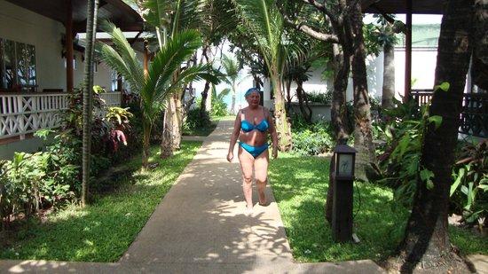 Banana Fan Sea Resort : Hotel area
