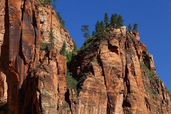 Zion Canyon Scenic Drive: Нац. парк Сион
