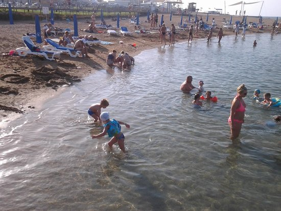 Anastasia Beach Hotel: пляж в 5 минутах от отеля