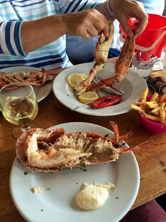 Beach House Cafe: Fresh Devon lobster