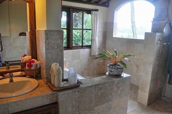 Alam Jiwa: Hanoman bathroom