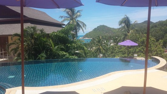 Koh Phangan Pavilions: View from the Pool