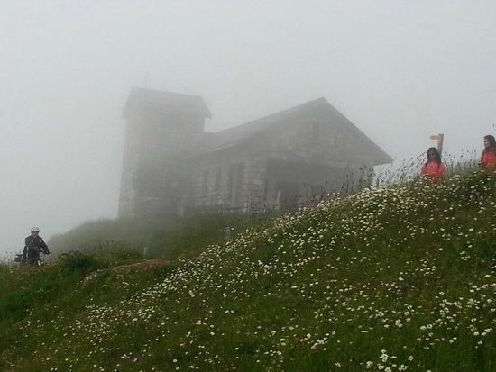 Mt. Rigi : такой был сильный туман