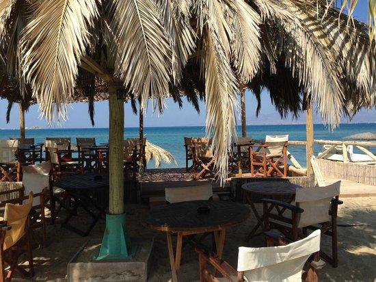 Medusa Resort : le bar