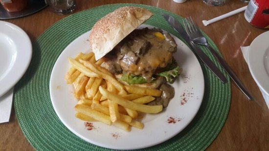 Oribi Gorge Hotel: Venison Burger. with great chips!