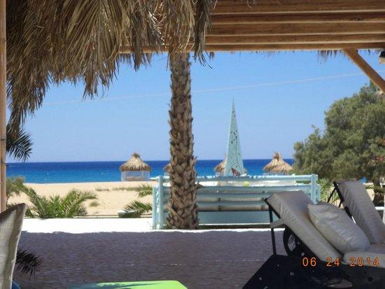Free Beach Bar & Restaurant: Η θέα απ'το μαγαζί