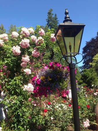 Butchart Gardens: Flowers in July