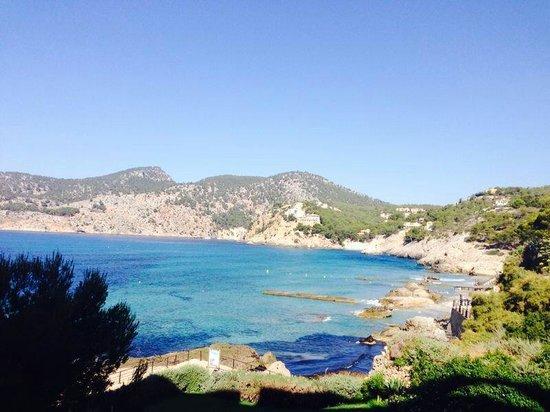 Olimarotel Gran Camp de Mar: Majorca July 2014