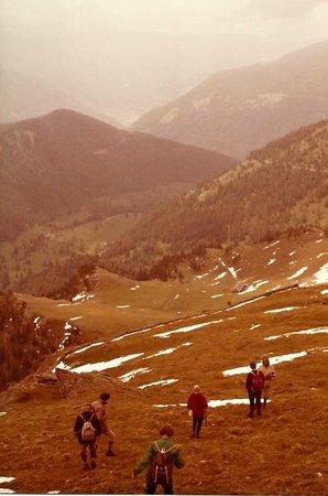 Nockberge: Abstieg - Vorsicht Kreuzottern