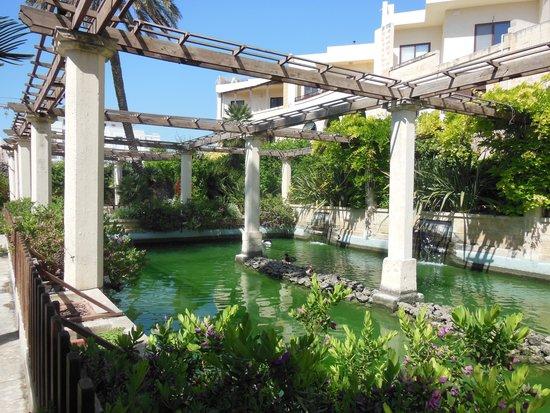San Anton Gardens: a nice pond with ducks