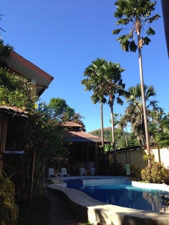 Darayonan Lodge: Piscine