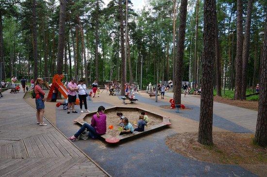 Concordia : Огромнейшая детская площадка в парке Дзинтари