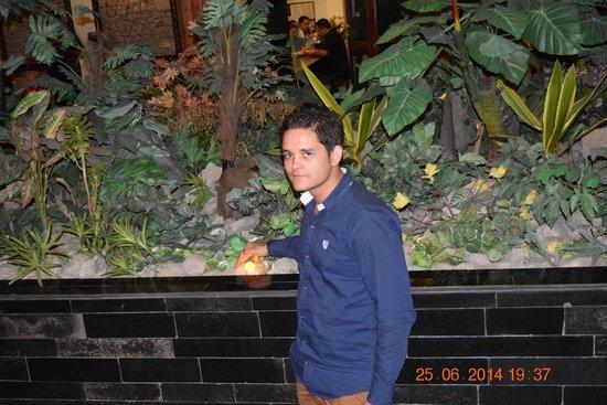 Honeymoon Inn Manali: Lobby