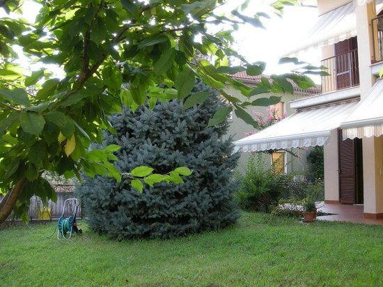 Giardino4 foto di b b giardino fiorito cinisello - Giardino fiorito torino ...