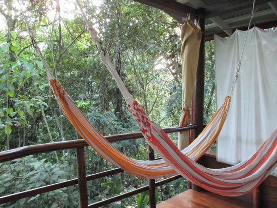 La Loma Jungle Lodge and Chocolate Farm: relax